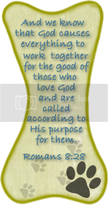 Free Scripture Tags by Edie at Rich Gifts 